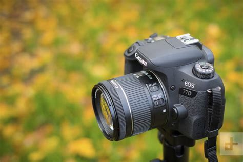 Canon EOS 77D Review   Digital Trends